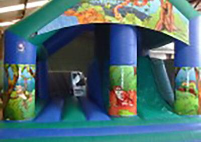 Enclosed Jungle Slide