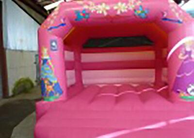 Bouncy Castles Ratoath Princess Bouncy Castle 12x12