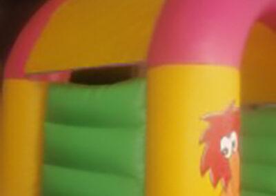 Bouncy Castles Ratoath Zoo Theme